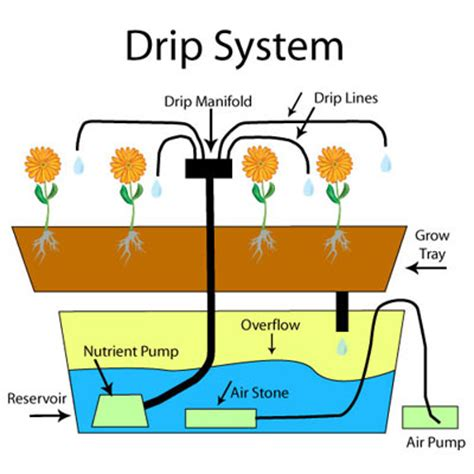 Hydroponic Drip System Hanna Instruments How To Set Up Drip Irrigation System For Vegetable Garden