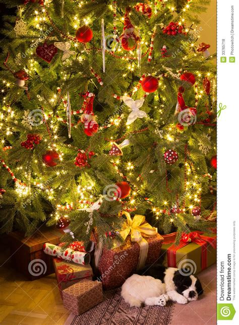 puppy under the christmas tree stock photo image 33765718