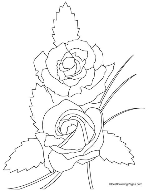 rose coloring pages easy free coloring pages of easy rose