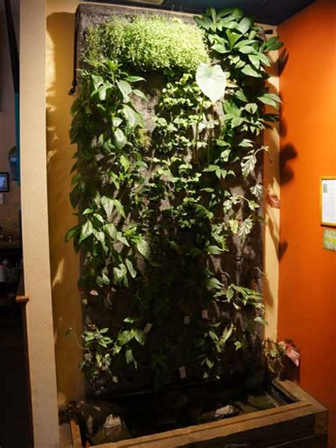 How To Start A Vertical Garden How To Start A Vertical Garden