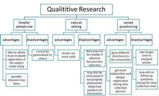 qualitative research template the bcr