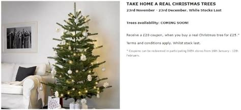ikea christmas trees real orlando buy a 163 25 tree at ikea and get a 163 20 ikea voucher