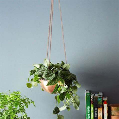 Buy Hanging Planters by 30 Copper Home Accents To Buy And Diy