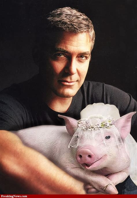 George Clooney Mourns His Dead Pig by George Clooney Marries His Pig 85852 Animal Fair