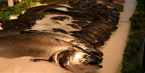 Will You Eat Fish With The Heads Still On by Want To Help Curb Food Waste Start Fish Heads