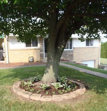 Around Tree Planter by 11 Best Ideas About Willow Brick Circle On