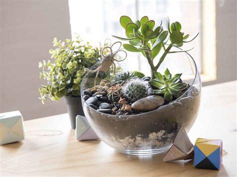 sustaining terrarium