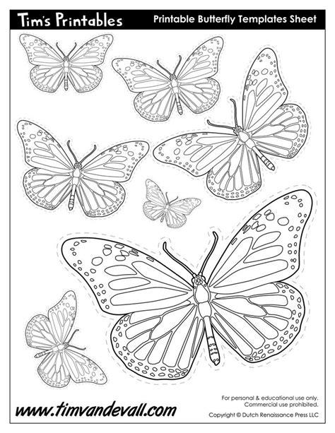 martha stewart butterfly template martha stewart butterfly template free 129 best stencil