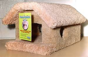 cages ferret chinchilla creativepet serving your