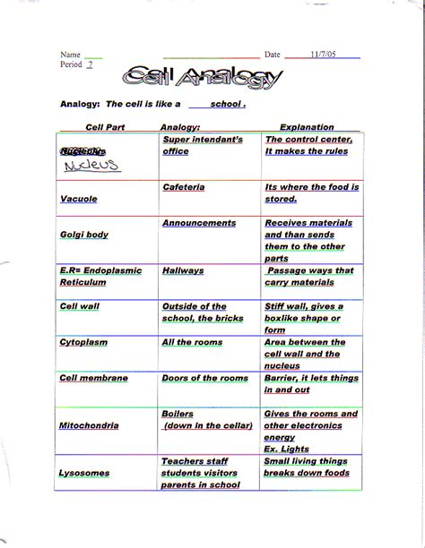 Cell City Worksheet by Cell City Analogy Worksheet Answers Photos Dropwin