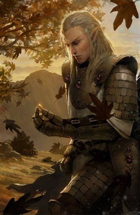 elven winter the saga of the elven books 35 best elven images on warrior