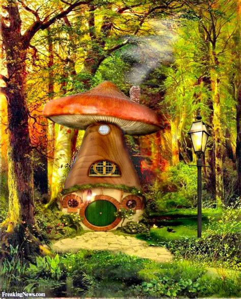 hobbit house funny hobbit pictures freaking news