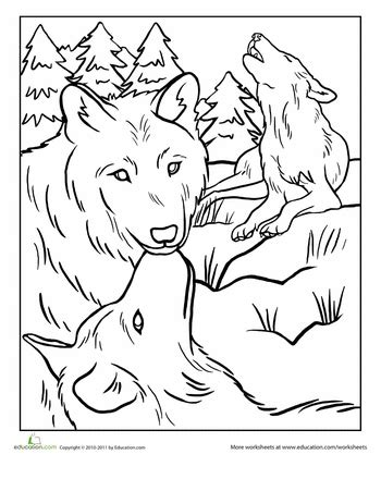 wolf pack coloring page worksheets wolf and coloring books