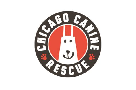chicagoland rescue easy way to help homeless dogs in chicago the out u go