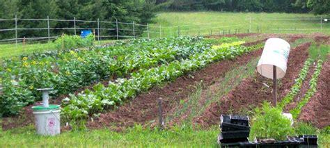 planning your survival garden expert prepper