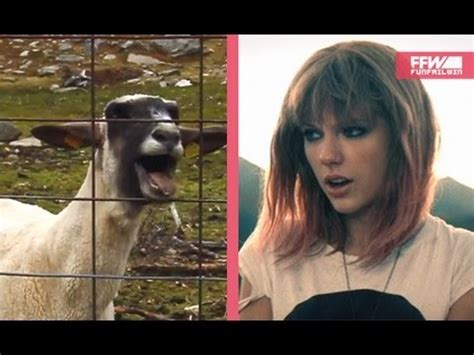 adele ft goat screaming goat featuring taylor swift shake it off doovi