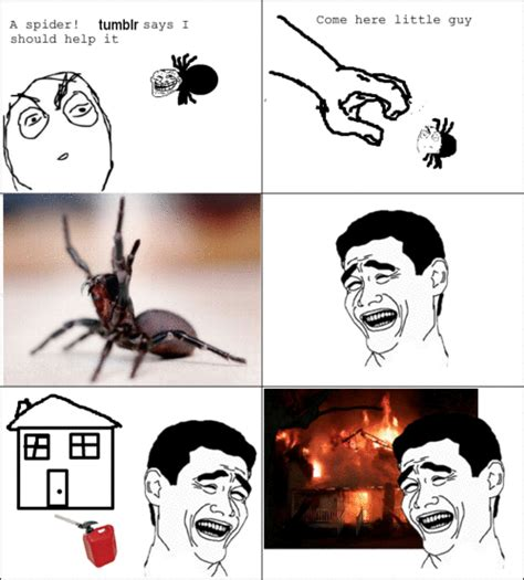 Kill Spider Meme - your favourite internet meme