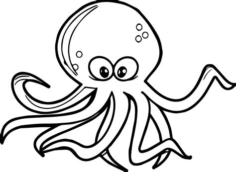 Octopus Coloring Page Wecoloringpage An For Coloring