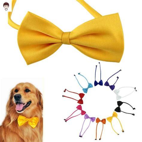 cute dog products dog life political dog products punk rock dog cute dog