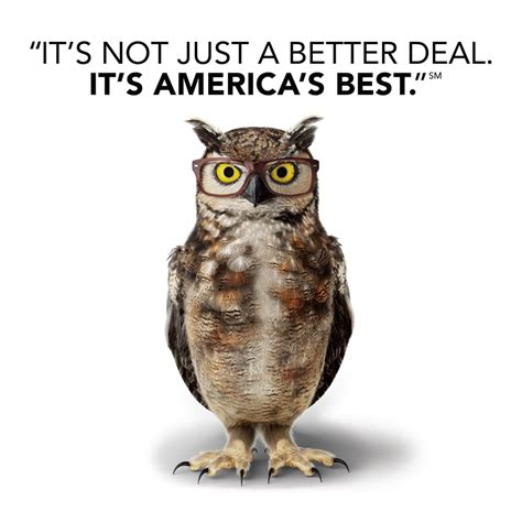 american eyeglasses owl commercial americas best owl commercial who is the voice of america