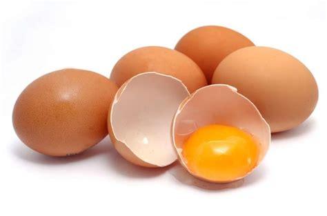 elenco calorie alimenti cibi ricchi di proteine l elenco completo foto pourfemme