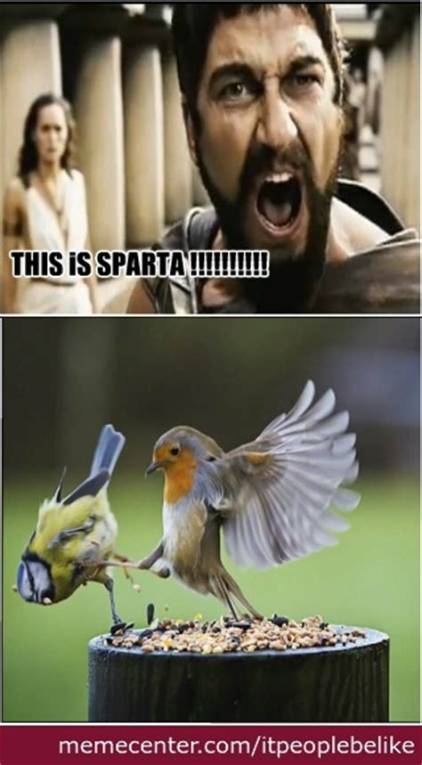 this is sparta meme memes this is sparta image memes at relatably