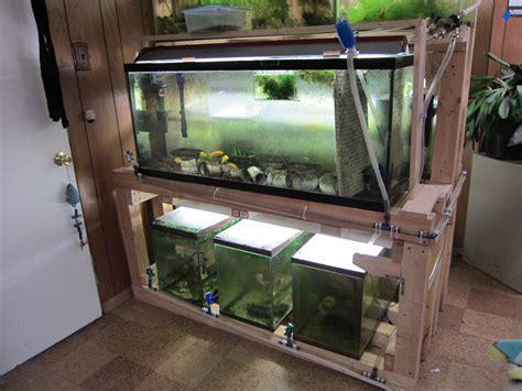 aquarium drain design easy water change system sonny s fish room