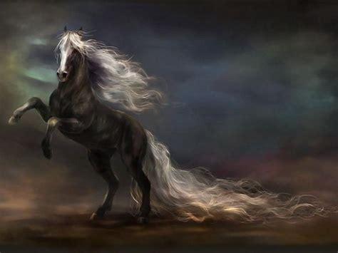imagenes animales hd 1080p imagenes de pintura caballo y fondos de pantalla de