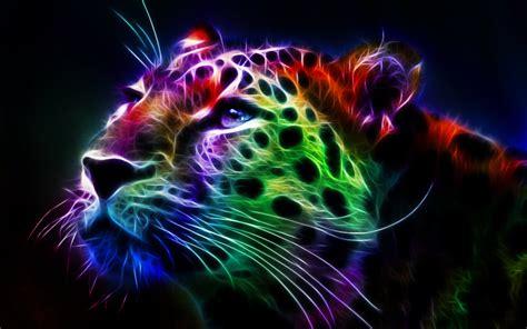 Wallpapers Of Colorful Animals | 40 colorful desktop backgrounds