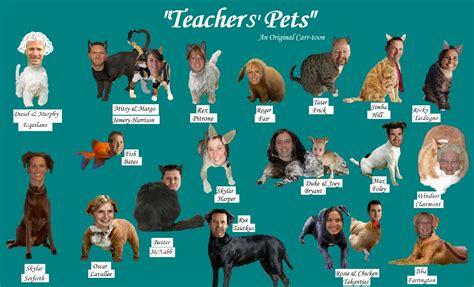 teachers pet teachers pets bhs report