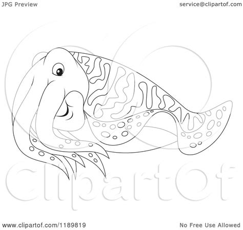 cuttlefish coloring pages sketch coloring page
