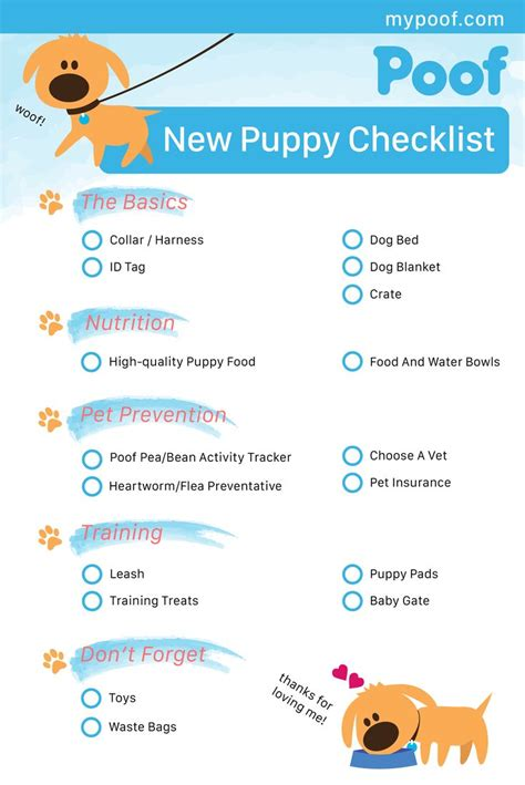 new puppy list 1000 ideas about new puppy checklist on new puppy stuff and things