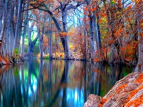 nature autumn stream backgrounds wallpapers wallpaperscom