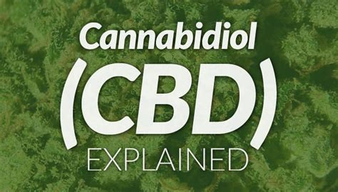 best hemp for cancer 754 best images about cancer treatment on