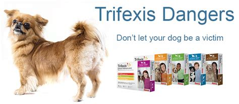 heartworm trifexis dogs silvieon4 from dogs naturally magazine trifexis dangers be aware
