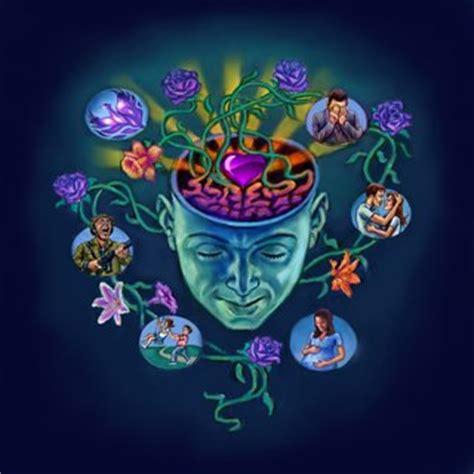 la memoria secreta de b01ncohep4 mente humana edn 233 ia rocha rocha flickr