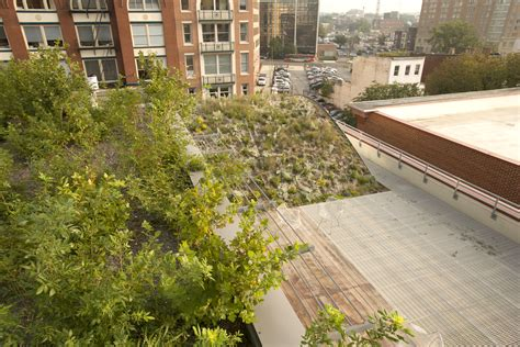 Landscape Architect Usa American Society Of Landscape Architects Headquarters