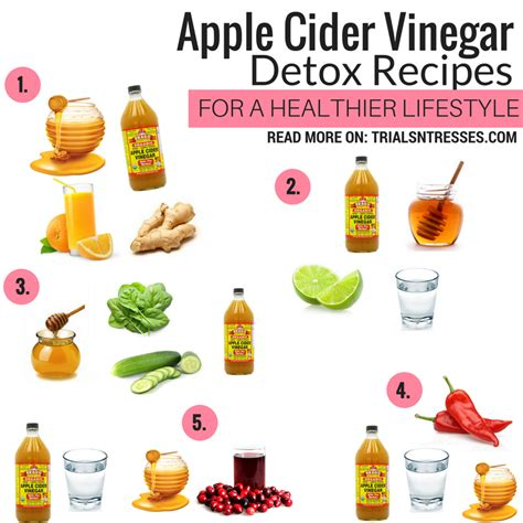 How To Make Cats Claw Drink For Detox by How To Make Apple Cider Vinegar Detox Drinks Autos Post