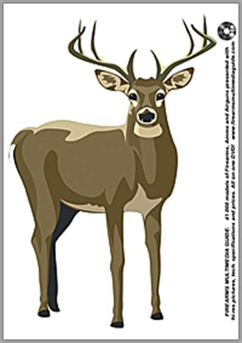 printable deer hunting targets 500 free printable targets on firearms multimedia guide