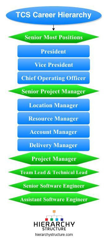 Cognizant Mba Decision by Tcs Career Hierarchy Chart Hierarchystructure