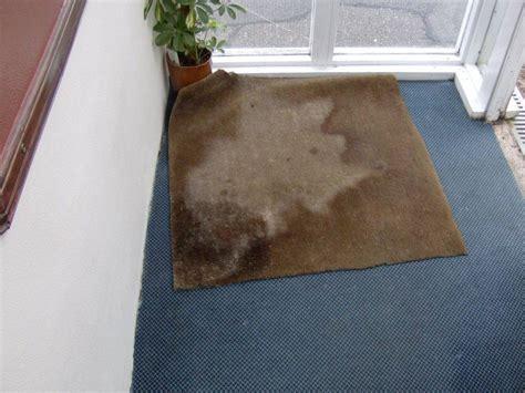 teppich im eingangsbereich quot teppich im eingangsbereich quot drumnadrochit hotel