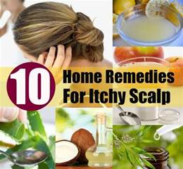 itchy scalp home remedy top 10 home remedies for itchy scalp diy home remedies