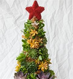 how to make a succulent christmas tree diy gardening