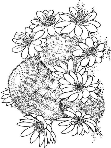 cactus flower coloring page cactus coloring pages download and print cactus coloring