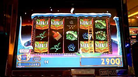 penny slot machines lucky penny penguins slot machine bonus win at parx casino
