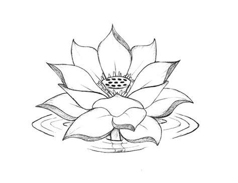 coloring pages of lotus flowers lotus flower lotus flower blooming on the water