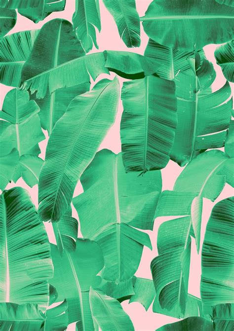 banana leaf template iphone 10 handpicked ideas to discover in other banana