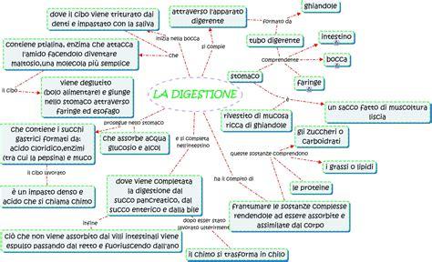 digestione alimenti digestione mappa concettuale