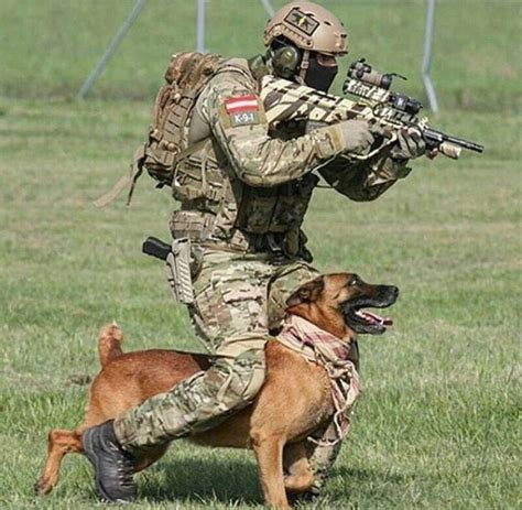 Mwd Operator by 17 Best Images About Mwd K9 And Search And Rescue Dogs On Soldiers Air And