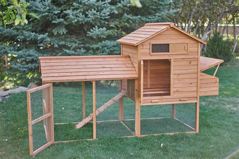 The Tavern Backyard Chicken Coop Chicken Saloon Best Backyard Chicken Coops